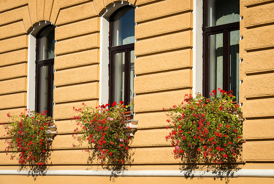 View of typical construction and windows decorated with flowers in the old town of Bra?ov in Romania. (Daniel Korzeniewski)