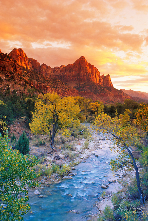 Evening light on Watchman Peak above the Virgin River, Zion Canyon, Zion National Park, Utah