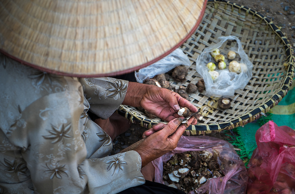 VIET HUNG, VIETNAM - CIRCA SEPTEMBER 2014:  Vietnamese woman in a local market from the Viet Hung village  in Vietnam (Daniel Korzeniewski)