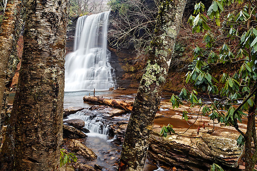 Little Stony Creek plummeting over Cascade Falls framed by tree trunks, Pembroke, Giles County, Virginia, USA