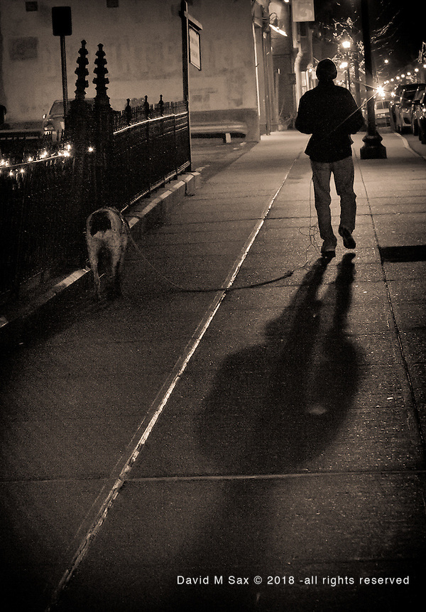 12.31.11 - Evening Stroll... (David M Sax Photography - all rights reserved)