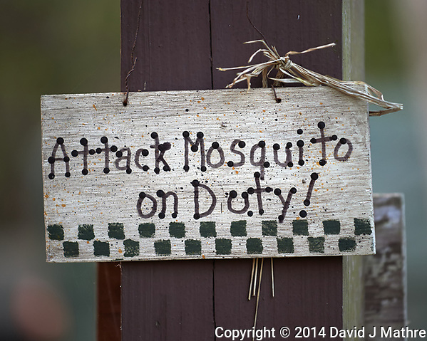 """Attack Mosquito on Duty"" sign at Clyde Butchers Swamp Cottage. Big Cypress Swamp in Florida. Image taken with a Nikon Df camera and 70-200 mm f/4 VR lens (ISO 800, 200 mm, f/4, 1/200 sec). (David J Mathre)"
