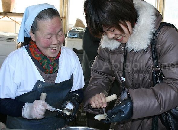 Learning how to shell oysters near Matsushima Bay, Sendai, Tohoku, Japan