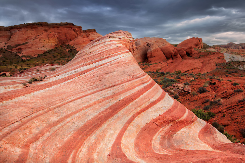 The Fire Wave in the Valley of Fire State Park, Nevada (Doug Oglesby)