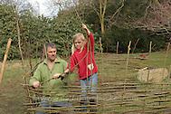Kinder bauen einen Weidenzaun als Umrandung eines Beetes, Weidenzweige, Weidenruten vom Schneiden einer Kopfweide werden in den Boden gesteckt und wachsen an, Lebender Zaun, zwischen den senkrechten Zweigen werden dünne Weidenzweige eingeflochten (Frank Hecker)
