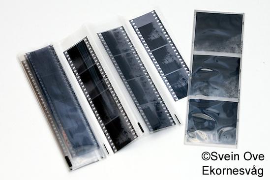 Bilde av sorthvitt negativer. Foto: Svein Ove Ekornesvåg (Svein Ove Ekornesvåg)