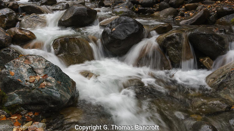 The soft sound of water cascading across rocks filled the air with the sweet sound of fall. (G. Thomas Bancroft)