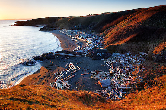 Driftwood strewn beach, Grandmas Cove, American Camp, San Juan Island National Historical Park, San Juan Island, San Juan County, Washington, USA (Copyright Brad Mitchell Photography.9601 Wall St.Snohomish, WA 98296.USA.425-418-7279.brad@bradmitchellphoto.com)