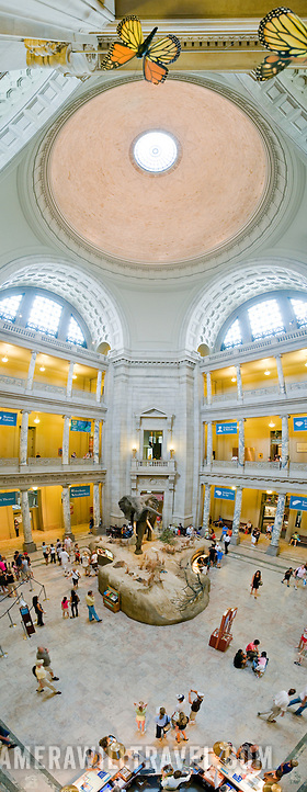 smithsonian museum of natural history smithsonian instituion smithsonian museum of natural history washington panorama 212131326 Smithsonian National Museum of Natural History