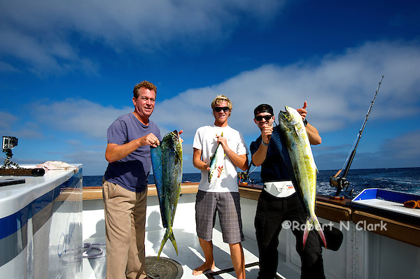 Offshore fishing off the coast of San Diego and Northern Baja California on the sport fisher Faith  Two nice Dorado and some small Yellowtail. (Robert Clark                        , Bob Clark)
