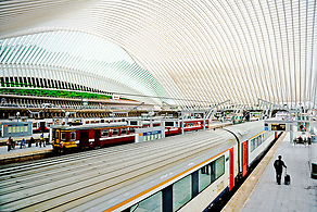 Liège-Guillemins: Train Station by Santiago Calatrava (Anna Fishkin)
