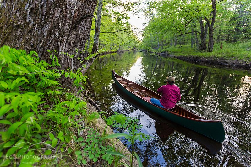 A man canoeing in spring on the Lamprey River in Epping, New Hampshire. (Jerry and Marcy Monkman)