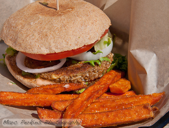 A Seabirds Burger: tomato, lettuce, onion, and thousand island dressing on a whole-wheat bun with a homemade seedy, nutty patty.  Today's was just delicious. (Marc C. Perkins)