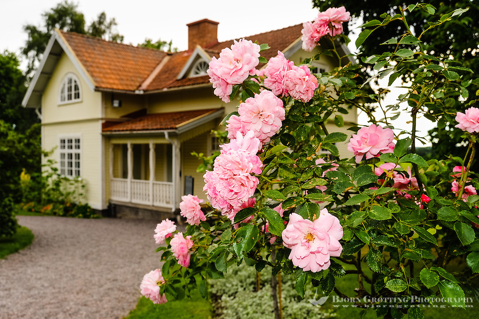 Sweden, Värmland, Sunne. Mårbacka is a mansion in Sunne Municipality. Author Selma Lagerlöf was born and raised at Mårbacka. (Photo Bjorn Grotting)
