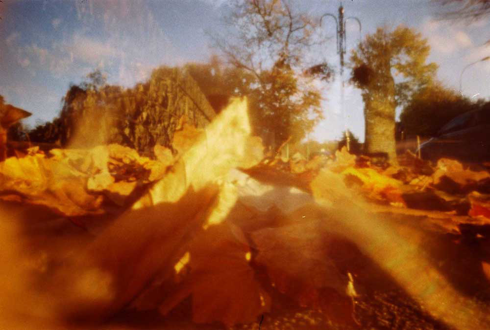 Pinhole photographs taken with the Matchbox Camera from www.Papercamera.co.uk Must not publish without consent of Chris McNulty. Copyright material. (Chris McNulty)
