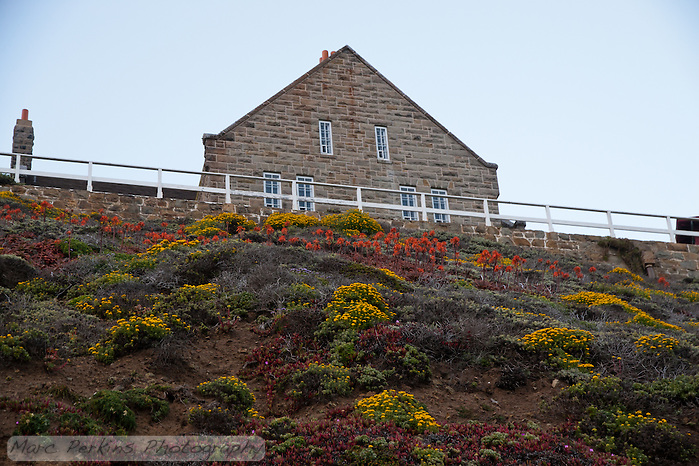 A hillside covered in blooming plants (yellow, red, and purple) provide foreground for the sandstone assistant keeper's house at the Point Sur Light Station.  Three families lived in this house at one time. (Marc C. Perkins)