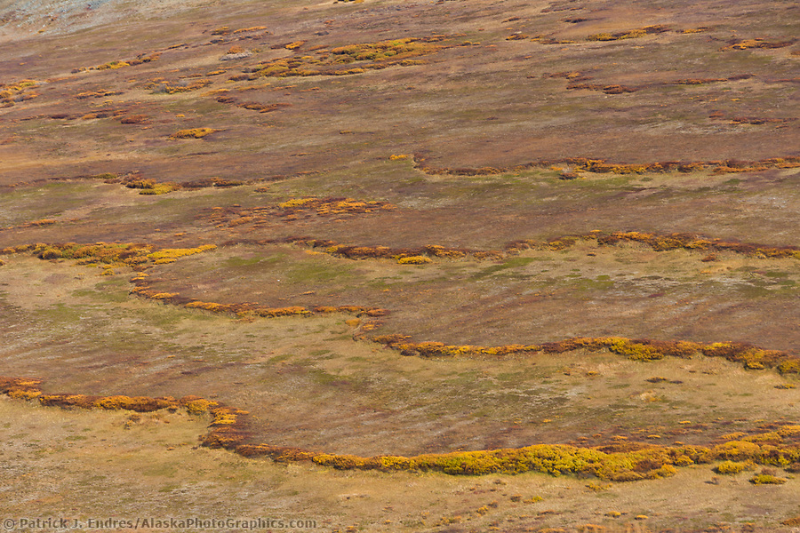 Skookum pass, Seward Peninsula, western arctic, Alaska. During summer heat, underlying frozen permafrost ground acts as a sliding plane along which the soil can slowly move down slope over time. (Patrick J. Endres / AlaskaPhotoGraphics.com)