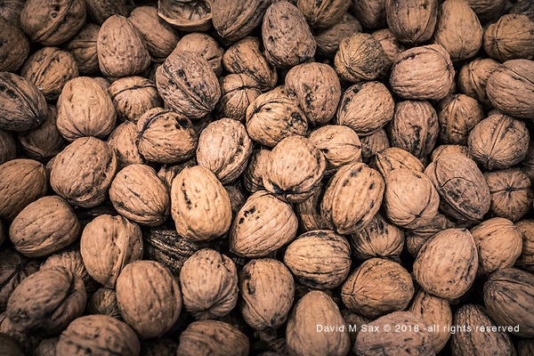 11.15.18 - A Little Nutty... (© David M Sax 2018 - all rights reserved)