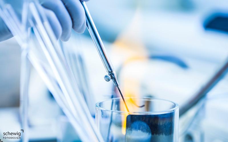 Weiterverarbeitung von Keimen, Bakteriologie, Labor, Krankenhaus, Pathologisches Institut, Österreich, Horn (Dieter Schewig)