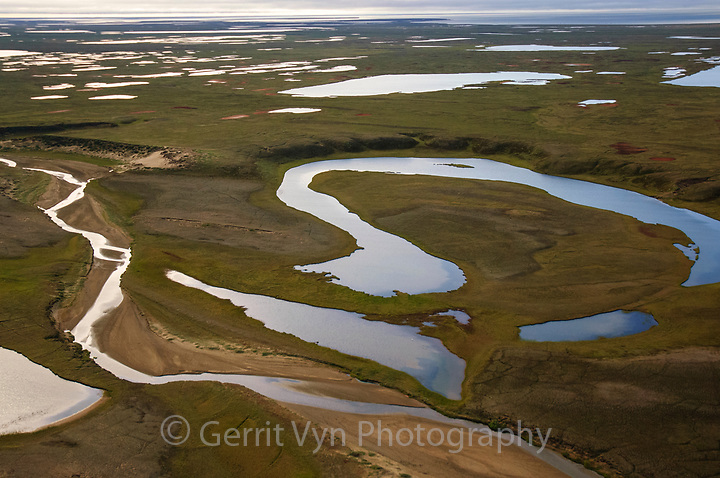 Aerial view of a tundra wetlands south of Teshekpuk Lake. Arctic Coastal Plain Alaska. July. (Gerrit Vyn)