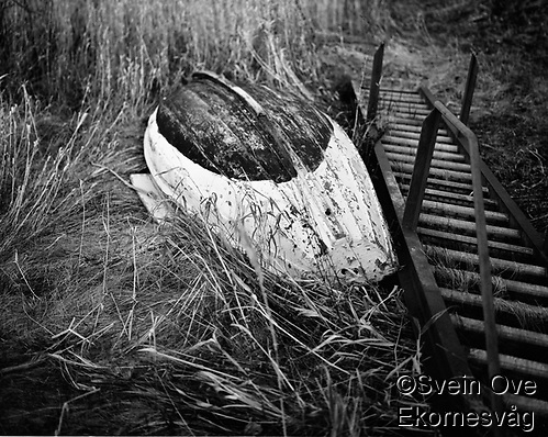 Leitaneset 23102011. En gammel trebåt ligger i gresset på Leitaneset. Foto: Svein Ove Ekornesvåg (Svein Ove Ekornesvåg)