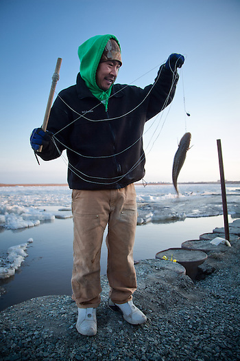 Bethel local, Aaron Mute, is quick to drop a line into the Kuskokwim River as soon as the ice breaks up. (Clark James Mishler)