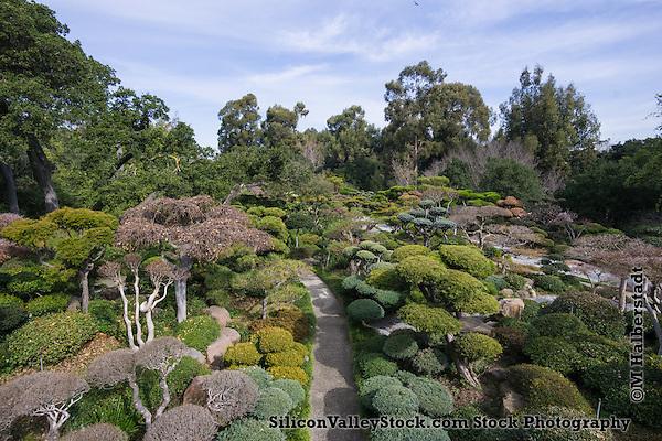 Japanese Gardens, Hayward, CA (Michael Halberstadt)