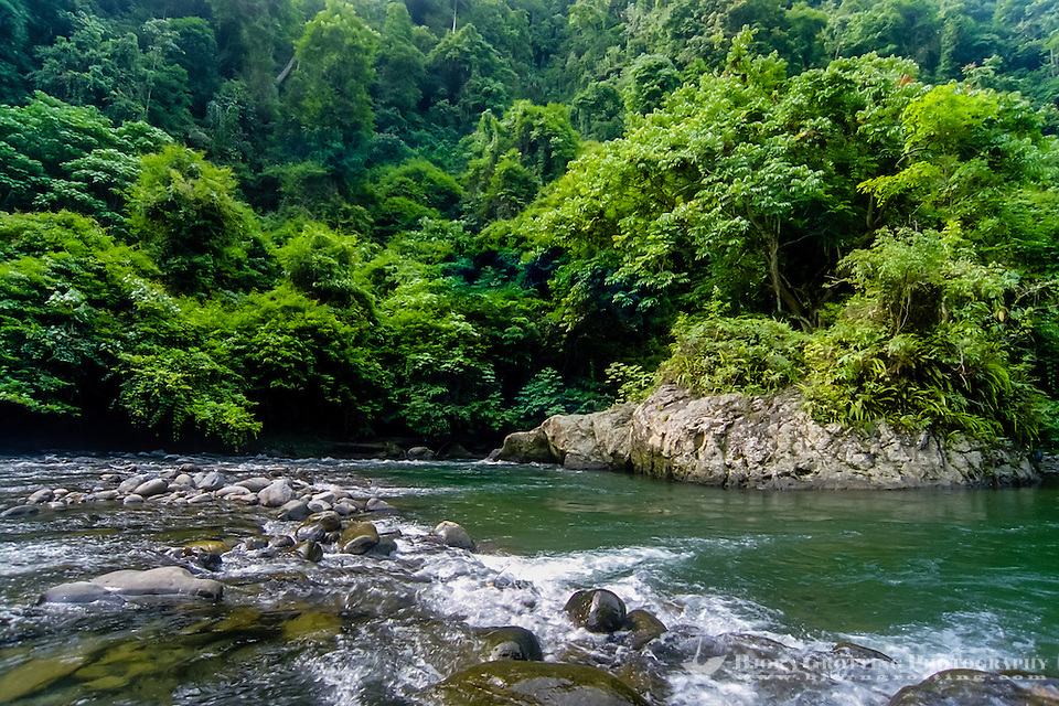 Indonesia, Sumatra. Bukit Lawang. Gunung Leuser nasjonalpark, the Bohorok river. From here it is possible to float down the river on a rafting tube. A perfect way to end a hard day of jungle trekking. (Photo Bjorn Grotting)