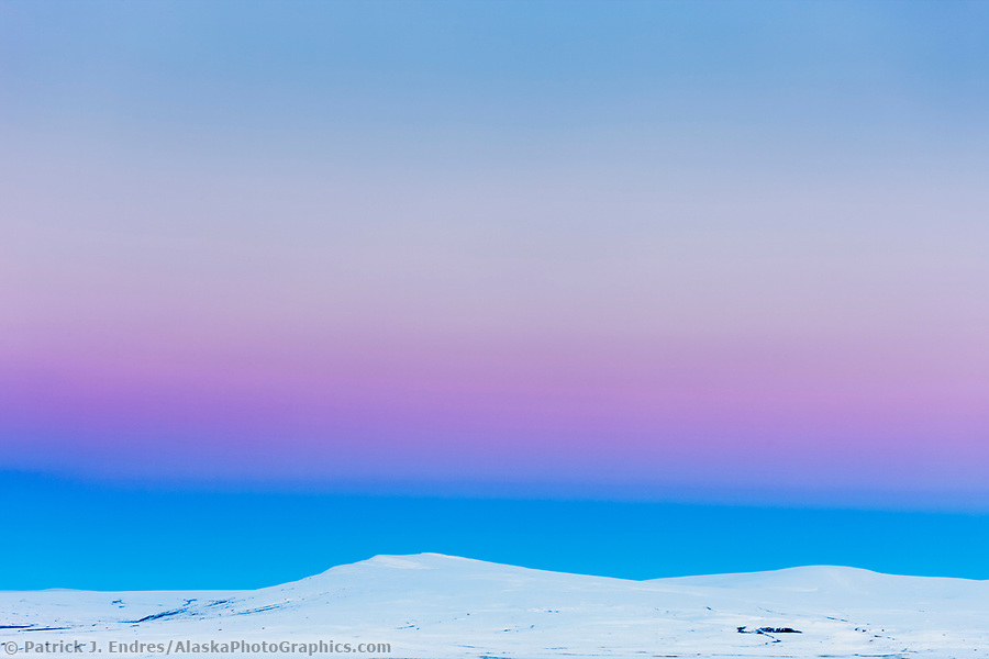 The soft pink and blue hues of dawn fall over the snow covered hills of the arctic coastal plain (Patrick J. Endres / AlaskaPhotoGraphics.com)