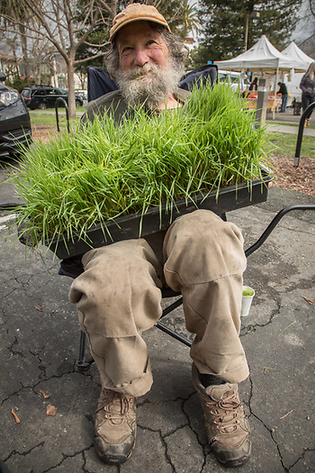 Rudd Farm Manager Jack Reed at his wheatgrass booth at the Calistoga Saturday Market (Clark James Mishler)