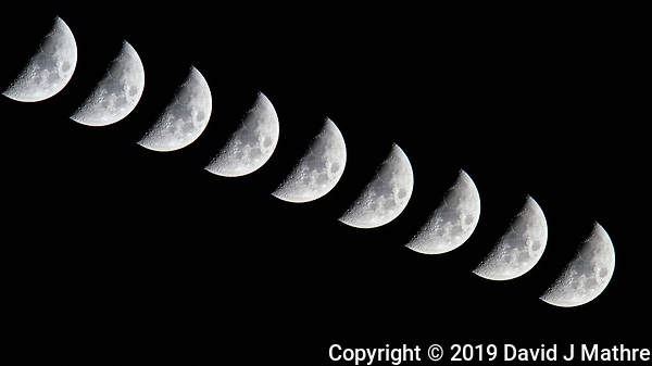 Waxing Crescent Moon. Composite of nine images (10 second interval) taken with a Nikon D810a camera and 600 mm f/4 VR lens (ISO 800, 600 mm, f/11, 1/250 sec). Raw images processed with Capture One Pro and Photoshop (scripts, maximum). (DAVID J MATHRE)