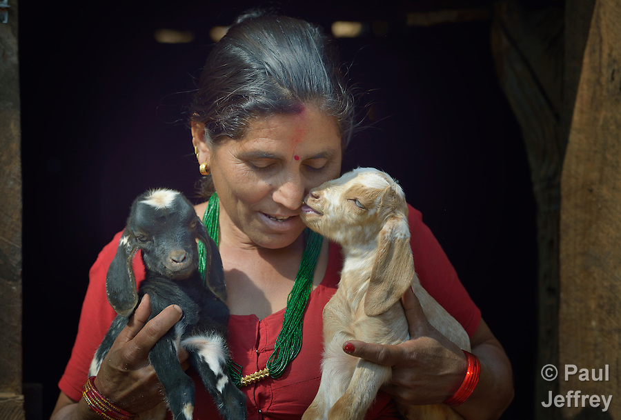 Bishnu Kumari Banjara holds two of her goats in Dhawa, a village in the Gorkha District of Nepal. Following the 2015 earthquake that ravaged Nepal, she received several baby goats from Dan Church Aid, a member of the ACT Alliance, as a way to earn a livelihood and restart the village economy. Helping people in this and other largely Dalit villages has been a priority for ACT Alliance agencies. (Paul Jeffrey)