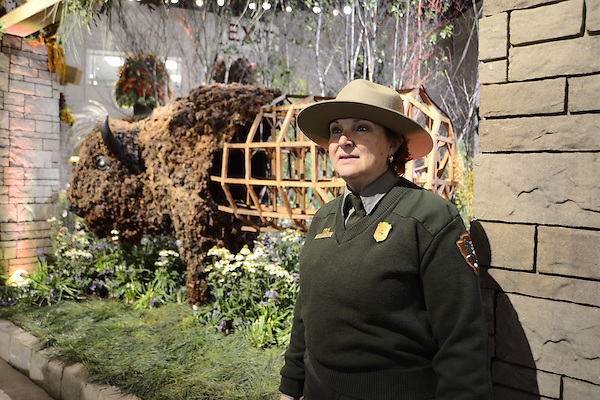 Parker ranger CLAIR COMER, stationed at the Shenandoah National Park in Virginia greeting visitors as she stand next to American Bison/Prairie House, 2011 by Emily White, at the entrance of the 2016 PHS Flower Show. 'Explore America' is the them for the 2016 edition of the Pennsylvania Horticulture Society Flower Show. The annual show is held at the Pennsylvania Convention Center in Center City Philadelphia PA., and rubs till March 13. (Bastiaan Slabbers)