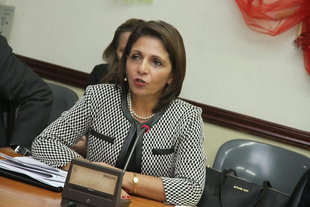 Procuradora General de Costa Rica, Ana Lorena Brenes