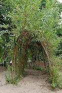 Weidentunnel, Weiden-Tunnel, Zweige von Weide wurden tunnelförmig in die Erde gesteckt und sind wieder angewachsen, Kopfweide, Salix spec., (Frank Hecker)