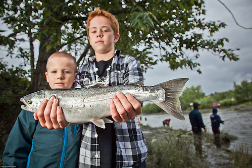 Ryan Gustason, age 12, and his cousin, David, land a Silver Salmon at Anchorage's Ship Creek within two hours of their arrivial from California. (Clark James Mishler)