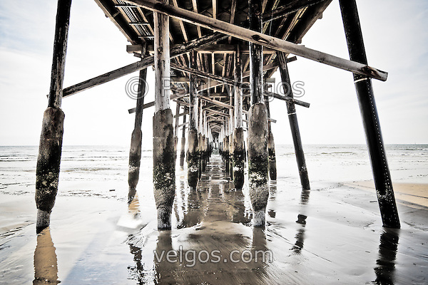 MG 5709 Under Newport Pier Photo New Newport Beach California Photos