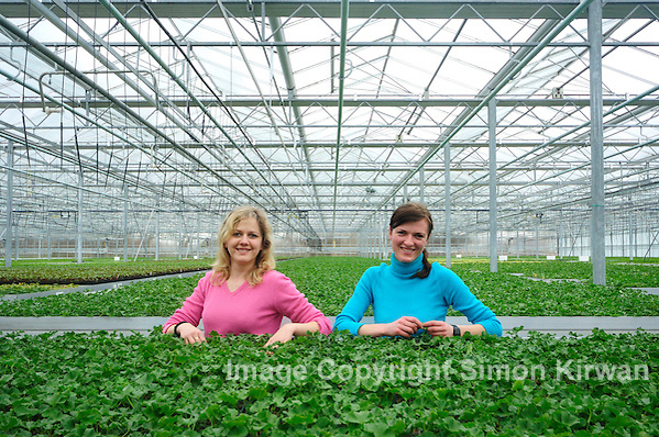 Agnieszka and Isabella from Poland Check Plants for Fungus - Editorial Photography By Simon Kirwan