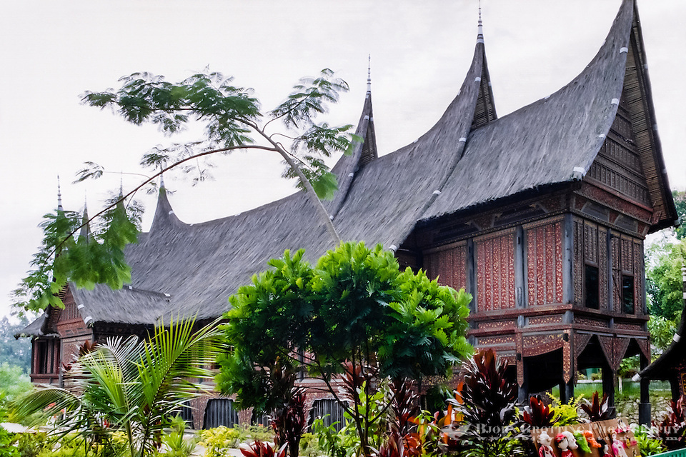 West Sumatra, Bukittinggi. Rumah gadang (Minangkabau: big house with horn-like roof). Traditional Minangkabau home at the museum. (Photo Bjorn Grotting)