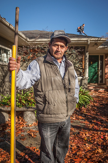 Ignacio Barreda and his associate work to remove leaves from the roof and gutters of a home on Cedar Street in Calistoga, CA  barredai@yahoo.com  707-337-0811 (© Clark James Mishler)