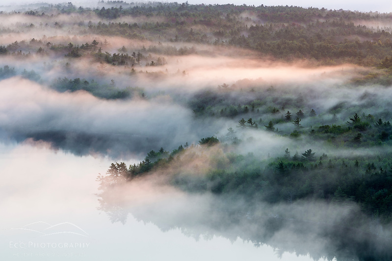 Fog rises from Echo Lake at dawn in Maine's Acadia National Park. (Jerry and Marcy Monkman)