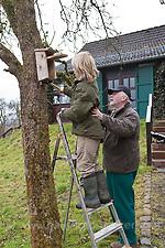 Nistkasten, Großvater, Opa und Enkelkind, Kind hängen Vogel-Nistkasten für Halbhöhlenbrüter in einem Obstbaum auf, Garten (Frank Hecker)