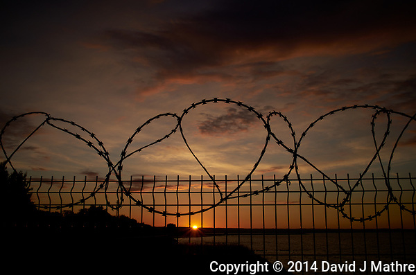Razor Wire Coiled Fence at Sunset. Walkabout in Westerplatte Memorial Park. Image taken with a Leica X2 camera and 24 mm lens. (David J Mathre)