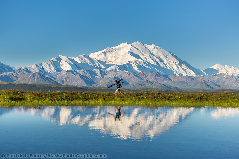 Photographer Patrick Endres hikes along a tundra pond with Mt Denali in the distance, Denali National Park, Interior, Alaska (Patrick J Endres / AlaskaPhotoGraphics.com)