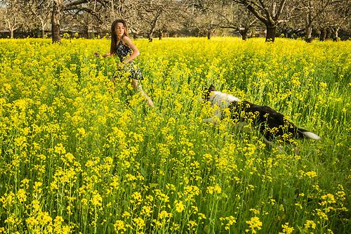My neighbor Anjali runs through spring mustard flowers with her dog, Zoe, in Calistoga (Clark James Mishler)