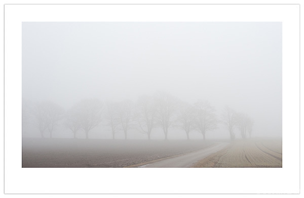 (Ian Mylam/© Ian Mylam (www.ianmylam.com))