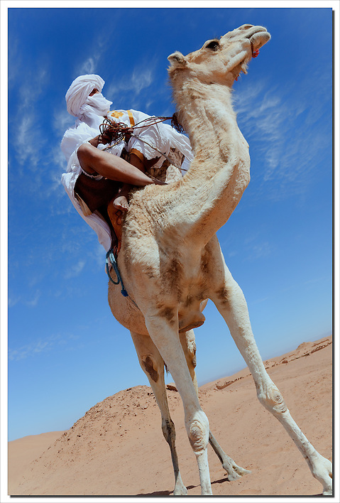 Nomad on dromedary in the Sahara desert of Morocco. (Rosa Frei)
