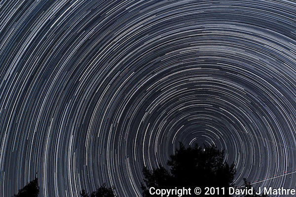 North View Star Trails. Summer Night in New Jersey. Images taken with a Nikon D3s and 24 mm f/1.4G lens (ISO 400, 24 mm, f/4, 1/30 sec). Raw image processed including Nikon 24 mm f/1.4G Lens Correction with DxO Pro. Composite of 328 images combined with StarTrails Program. (David J Mathre)