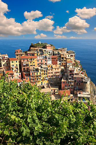 Photo of the fishing port of Manarola, Cinque Terre National Park, Liguria, Italy (Paul E Williams)