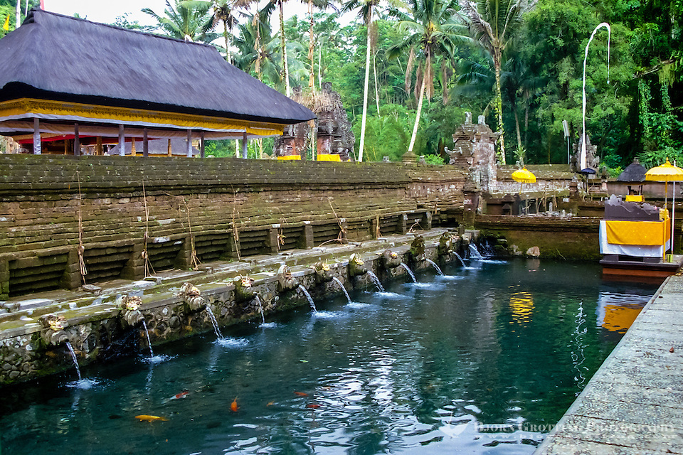 Bali, Gianyar, Tirtha Empul. Pura Tirtha Empul temple close to Tampaksiring. The holy water pours into a pool. The water is said to have magical powers, and all the water for cremations on Bali is taken from this spring. (Photo Bjorn Grotting)